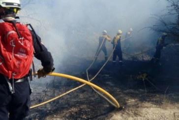 Todo Navarra, en «riesgo extremo» de incendios forestales