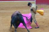 Entrega de Trofeos a los toreros más destacados en Cintruénigo, en el 50 Aniversario de la Plaza de Toros