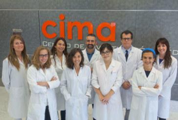 Investigadores del CIMA desarrollan una estrategia que frena el crecimiento del tumor hígado