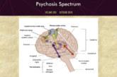 El CHN y la Red de Salud Mental de Navarra coordinan la publicación de un monográfico sobre Esquizofrenia