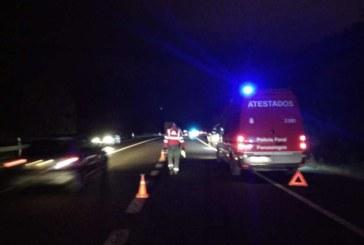 Dos peatones murieron atropellados en las carreteras navarras en 2018