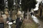 Morir sin testamento ni herederos: «premio» para el denunciante