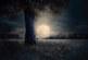 AGENDA: 12 de diciembre, en Museo Educación Ambiental, charla sobre la influencia de la luna en la agricultura
