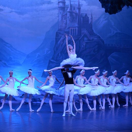 El Russian Classical Ballet trae a Pamplona «El lago de los cisnes»