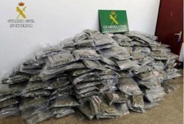 25 detenidos con 2.700 kilos de marihuana en Cataluña, el mayor alijo incautado en España