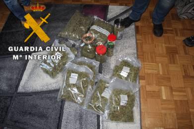Detenidos el presidente de un club de cannabis de Estella y sus padres