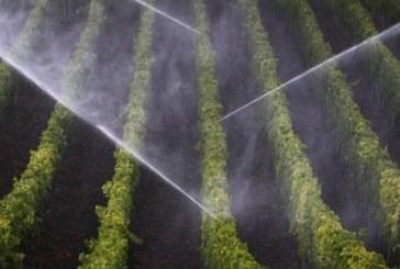 Tarazona acoge este martes una jornada sobre el agua y la agricultura
