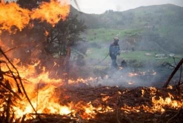 Horizoner, una nueva aplicación para prevenir y detectar incendios forestales
