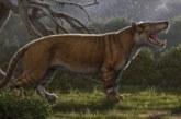 """Identifican el fósil de un nuevo mamífero gigante, el """"gran león africano"""""""