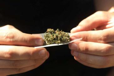 Marihuana, la droga más consumida entre jóvenes tudelanos, según un estudio