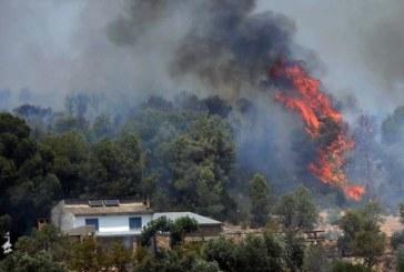 El incendio de Vinebre (Tarragona), el peor en 20 años, podría quemar hasta 20.000 hectáreas