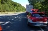 Detenido el conductor de un camión parado en un carril por quintuplicar alcohol en Santesteban