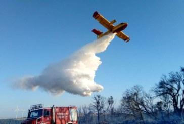 Estabilizado el incendio declarado esta tarde en un pinar de las Bardenas