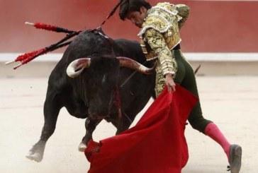 Núñez del Cuvillo y La Palmosilla ganan los premios oficiales de San Fermín