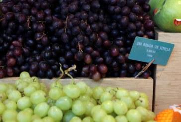 La inflación sube al 0,5 % en julio por frutas y carburantes