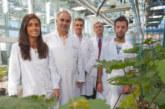 Desarrollan una tecnología para fabricar nuevos fertilizantes con residuos
