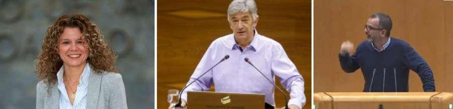 El Senador Autonómico de Navarra deberá esperar a las nuevas Cortes, aunque sí será elegido