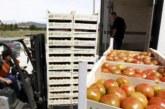 Navarra apuesta por investigación y digitalización en agricultura y ganadería