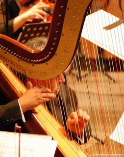 Sábado 19 de octubre 2013, en La Sala Museo Pablo Sarasate de Civivox Condestable, audición de jóvenes intérpretes de arpa y flauta