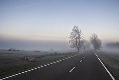 Aumentarán más los  controles de alcohol y drogas en las carreteras navarras