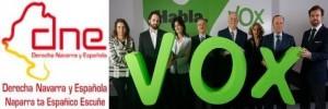 Derecha Navarra y Española (DNE) negocia con VOX un futuro común mediante alianza o colaboración