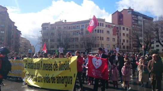 Navarra se une a la VIDA en Pamplona