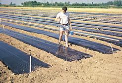 2 millones para ayudas excepcionales agricultores y pymes artesanas de Navarra