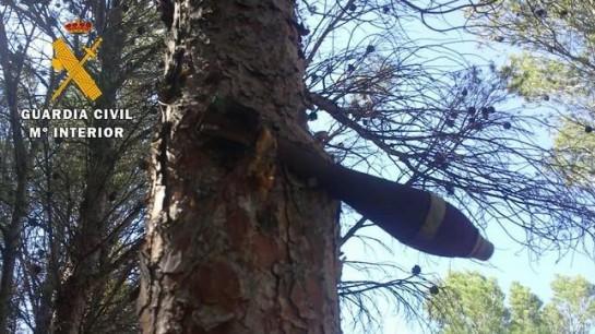 Desactivada una bomba de la Guerra Civil que llevaba incrustada en un árbol de Teruel 75 años