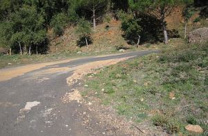 Hallado muerto un ciclista de 50 años en la carretera del Fuerte de San Cristóbal