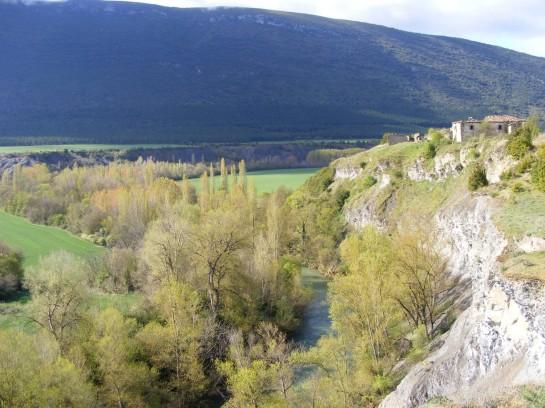Declaradas zonas de especial conservación (ZEC) las cuencas de seis ríos del pirineo navarro