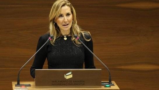 El PPN no comparte la decisión del PP en la Asamblea de Madrid sobre el régimen foral