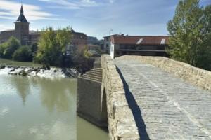 el puente de Santa Engracia sobre el río Arga. (www.parquefluvialdepamplona.es).