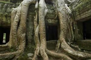 Mahendraparvata, ciudad deshabitada hace más de 500 años en la espesa jungla de Camboya.