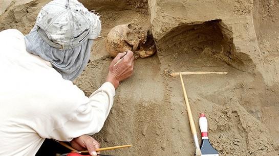 Hallan el ADN más antiguo que el de los demás humanos