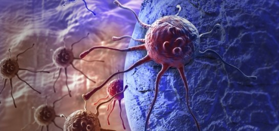 Las claves de la Organización Mundial de la Salud para prevenir el cáncer