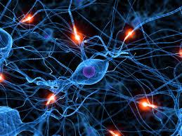 Similitudes entre el Big Data y la mente humana