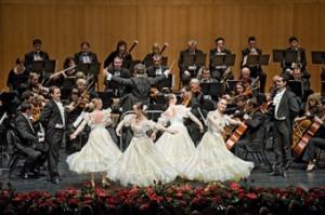 Gran Concierto de Año Nuevo en el Baluarte.