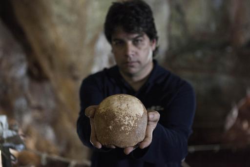 """Un cráneo prehistórico, pieza clave """"del rompecabezas"""" en la historia de la humanidad"""