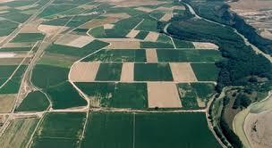 Navarra recibe 95 millones para el pago de las ayudas de la PAC de 2014