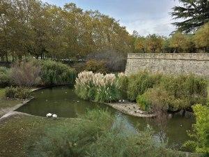 Parque de la Taconera de Pamplona. Foto: LF Navarra Información