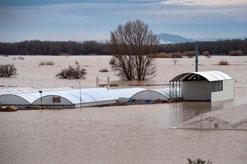 El Gobierno aprobará un Decreto con ayudas para paliar los efectos de la crecida del Ebro