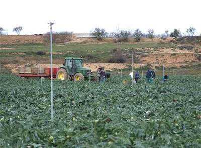 Detenidas diez personas en Navarra acusadas de explotar laboralmente a 49 compatriotas portugueses