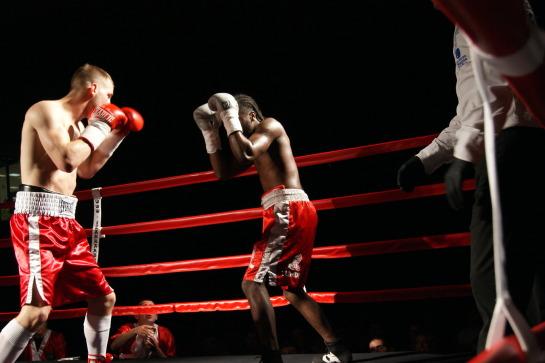 boxeador