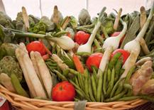 Exaltación verdura Tudela