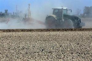 Los agricultores y ganaderos podrán beneficiarse de reducciones significativas en los módulos del IRPF-Moncloa
