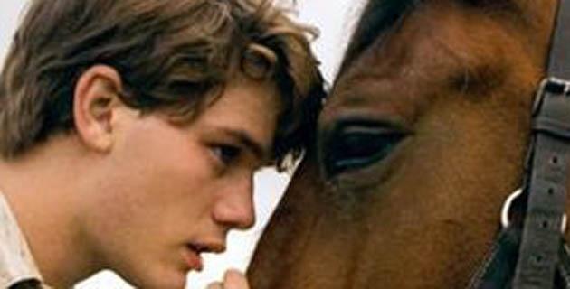 Un estudio revela que caballos y humanos comparten expresiones faciales
