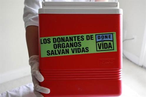 España continúa a la cabeza en donación de órganos