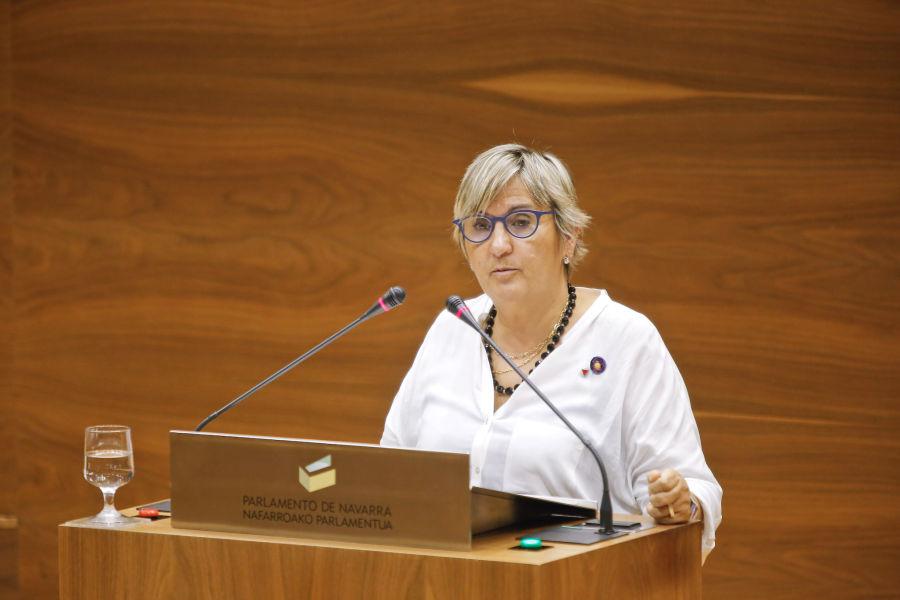 IE rechaza la entrega de la Medalla de Oro de Navarra a Arturo Campión, y pide al Gobierno que rectifique