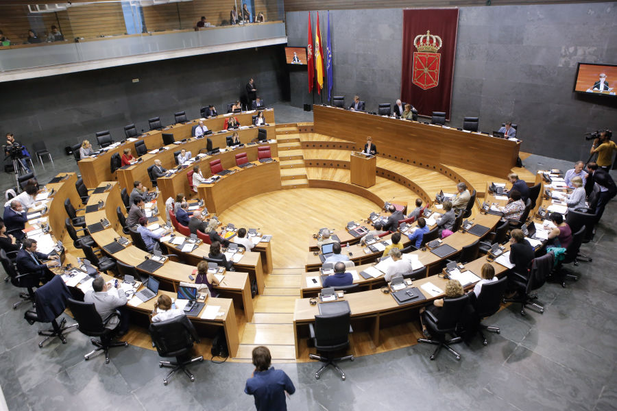 El Parlamento de Navarra pide una Policía Foral integral y rechaza solicitar el repliegue de la Guardia Civil