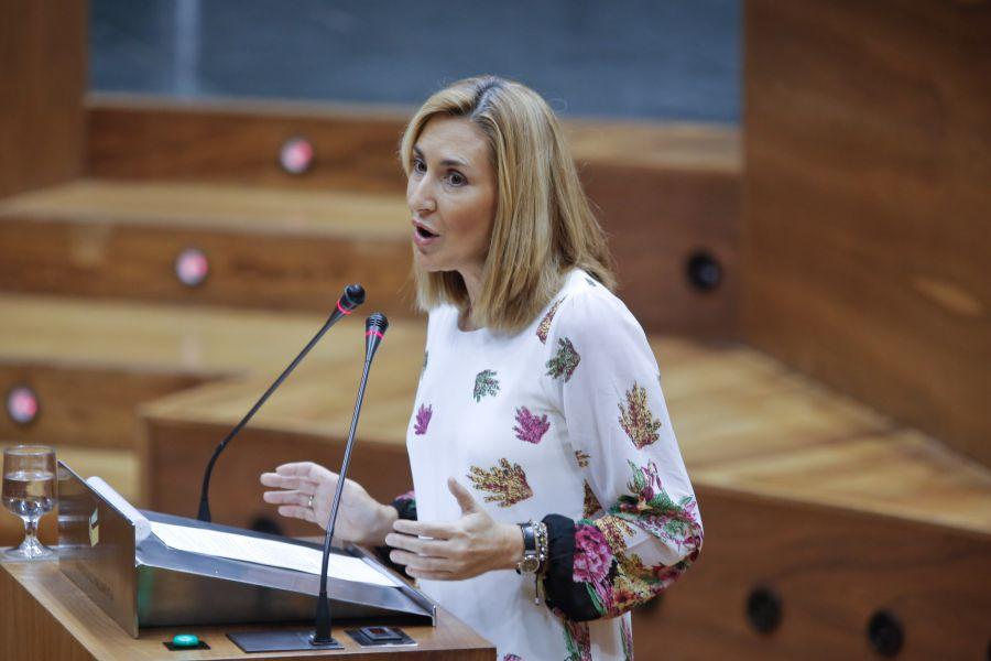 """El PPN quiere retirar el recurso de la OPE, aunque """"era obligado"""""""